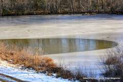 Christmas Day at Mill Pond Way (5)