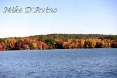 Fall Photos From Wolcott CT's Mill Pond Way # (10)