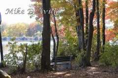 Fall Photos From Wolcott CT's Mill Pond Way # (101)