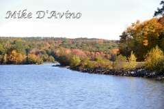 Fall Photos From Wolcott CT's Mill Pond Way # (11)