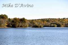Fall Photos From Wolcott CT's Mill Pond Way # (130)