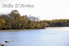 Fall Photos From Wolcott CT's Mill Pond Way # (177)