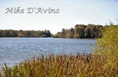 Fall Photos From Wolcott CT's Mill Pond Way # (185)