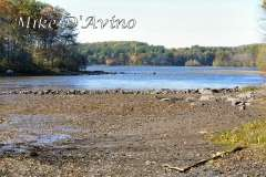 Fall Photos From Wolcott CT's Mill Pond Way # (198)