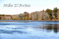 Fall Photos From Wolcott CT's Mill Pond Way # (204)