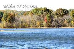 Fall Photos From Wolcott CT's Mill Pond Way # (207)