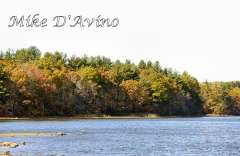 Fall Photos From Wolcott CT's Mill Pond Way # (214)