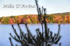 Fall Photos From Wolcott CT's Mill Pond Way # (23)