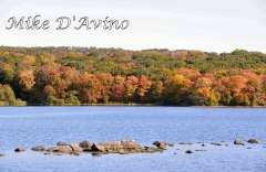 Fall Photos From Wolcott CT's Mill Pond Way # (34)