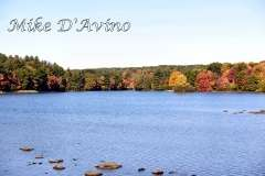 Fall Photos From Wolcott CT's Mill Pond Way # (39)
