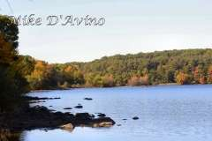 Fall Photos From Wolcott CT's Mill Pond Way # (51)