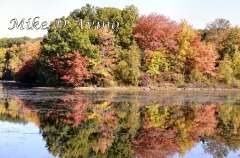 Fall Photos From Wolcott CT's Mill Pond Way # (54)