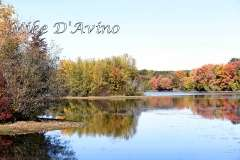 Fall Photos From Wolcott CT's Mill Pond Way # (55)