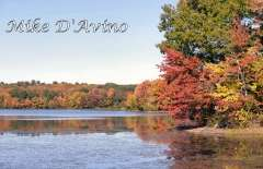 Fall Photos From Wolcott CT's Mill Pond Way # (62)