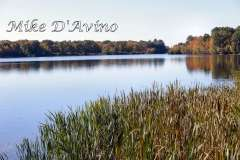Fall Photos From Wolcott CT's Mill Pond Way # (78)