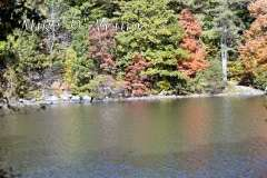 Fall Photos From Wolcott CT's Mill Pond Way # (8)