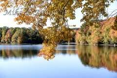 Fall Photos From Wolcott CT's Mill Pond Way # (90)