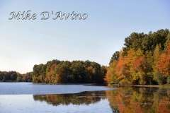 Fall Photos From Wolcott CT's Mill Pond Way # (93)