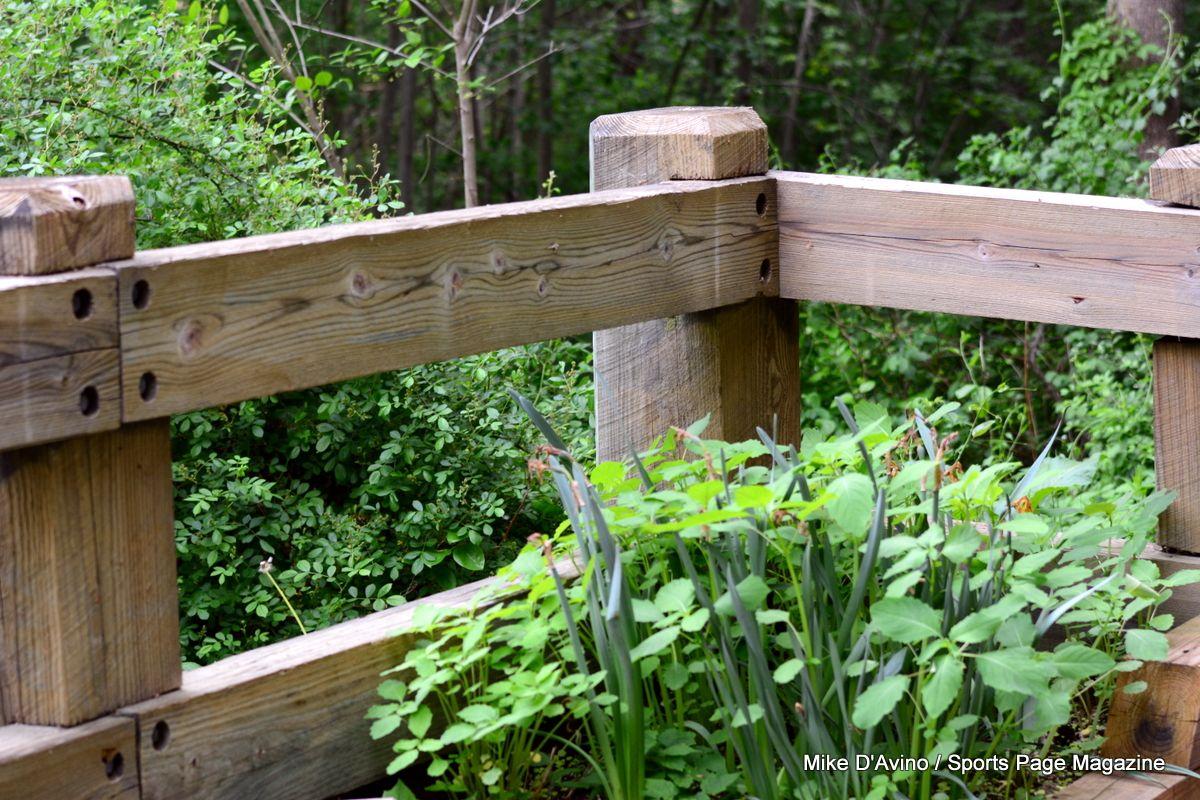 Farmington Canal Trail Hamden - Photo # 005