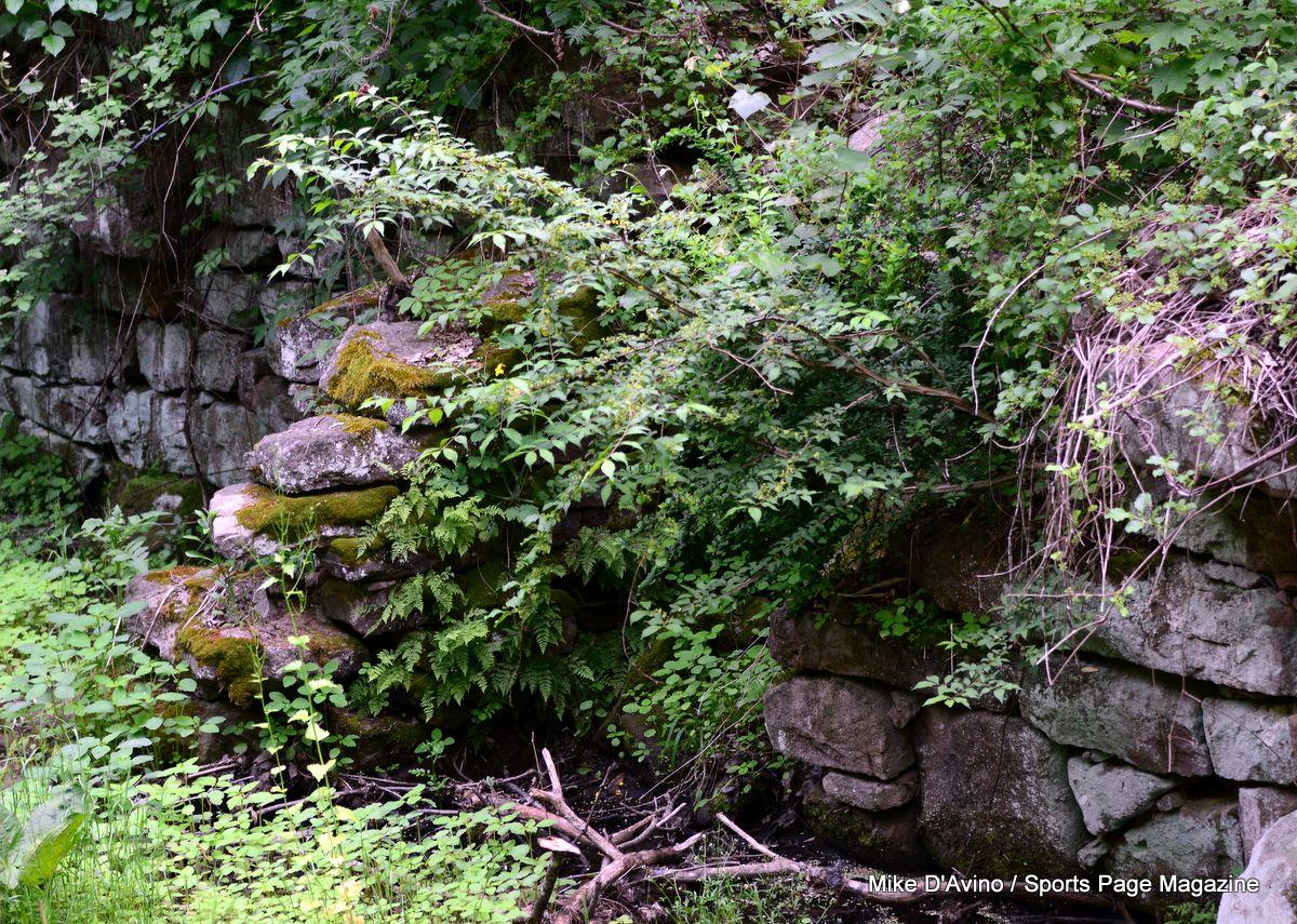 Farmington Canal Trail Hamden - Photo # 014