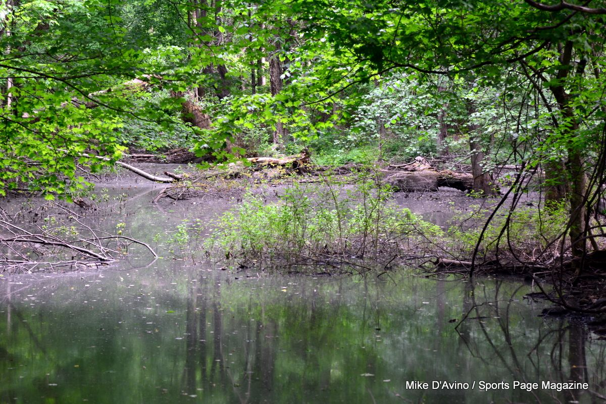 Farmington Canal Trail Hamden - Photo # 039
