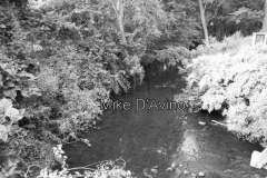 Farmington Canal Greenway (16)