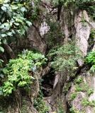 Gallery Non-Sports; Batu Caves - Gombak, Selangor, Malaysia - Photo # (16)