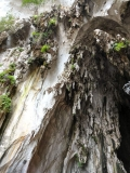 Gallery Non-Sports; Batu Caves - Gombak, Selangor, Malaysia - Photo # (70)