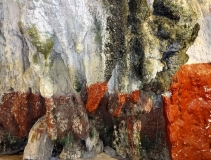 Gallery Non-Sports; Batu Caves - Gombak, Selangor, Malaysia - Photo # (73)