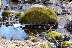 Mill Pond Way - Photo # (44)
