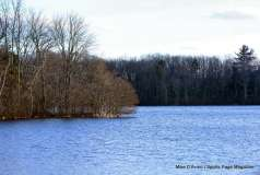 Mill Pond Way - Photo # (49)
