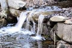 Mill Pond Way - Photo # (56)