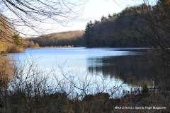 Mill Pond Way - Photo # (65)