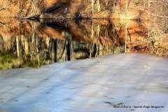 Mill Pond Way - Photo # (67)