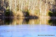 Mill Pond Way - Photo # (69)