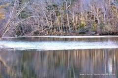 Mill Pond Way - Photo # (70)