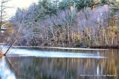 Mill Pond Way - Photo # (71)