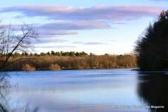 Mill Pond Way - Photo # (72)