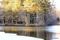 Mill Pond Way - Photo # (75)