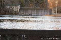 Mill Pond Way - Photo # (87)