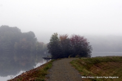 Gallery Non-Sports; Mill Pond Way - Photo # 030