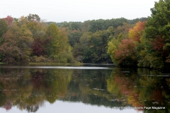 Gallery Non-Sports; Mill Pond Way - Photo # 054