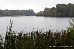 Gallery Non-Sports; Mill Pond Way - Photo # 087