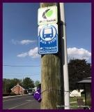 Paint Plainville Purple - Photo # (112)