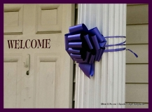 Paint Plainville Purple - Photo # (17)