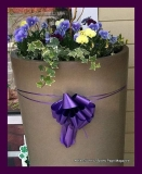 Paint Plainville Purple - Photo # (49)