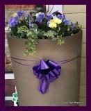 Paint Plainville Purple - Photo # (49)