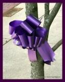 Paint Plainville Purple - Photo # (65)