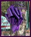 Paint Plainville Purple - Photo # (91)