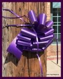 Paint Plainville Purple - Photo # (92)